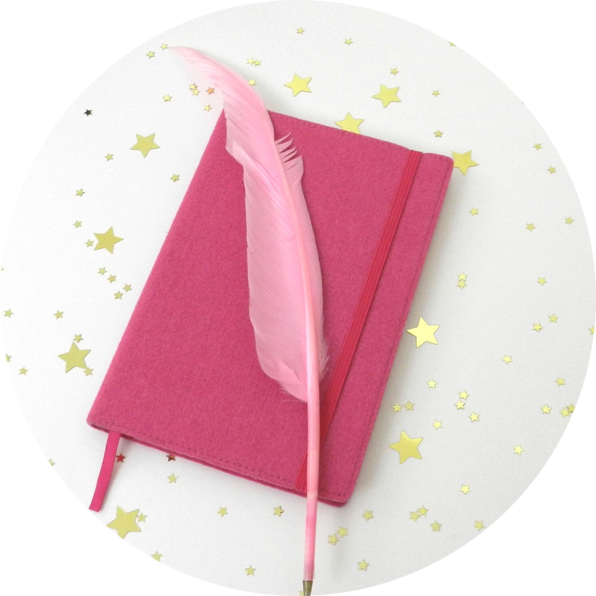 quaderno e piuma